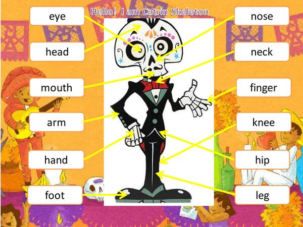 Body parts Catrin Skeleton