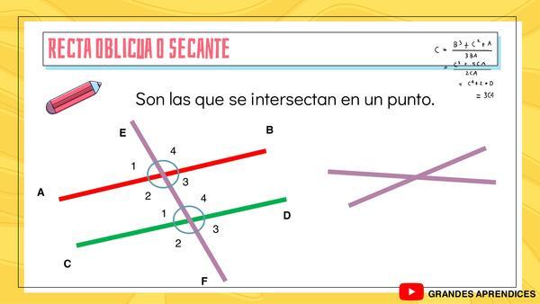 Tipo de rectas y líneas
