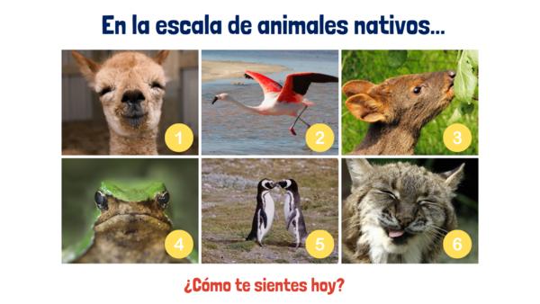 Escala de animales nativos