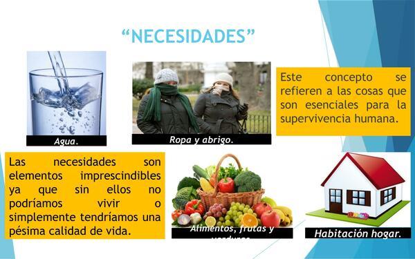PRESENTACION NECESIDADES Y DESEOS DE LA SOCIEDAD ,HISTORIA, PRIMERO MEDIO, UNIDAD 4